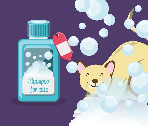 Gatto con bottiglia di shampoo