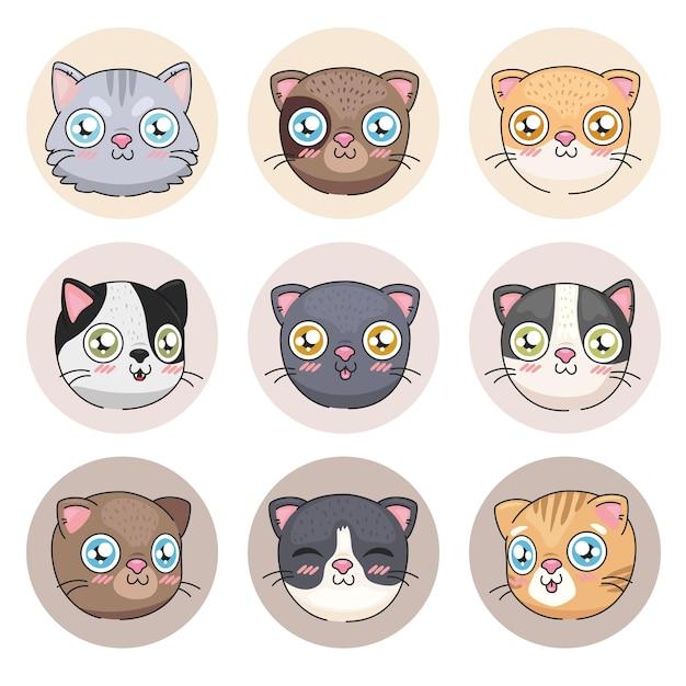 Collezione di icone di cartoni animati di gatti