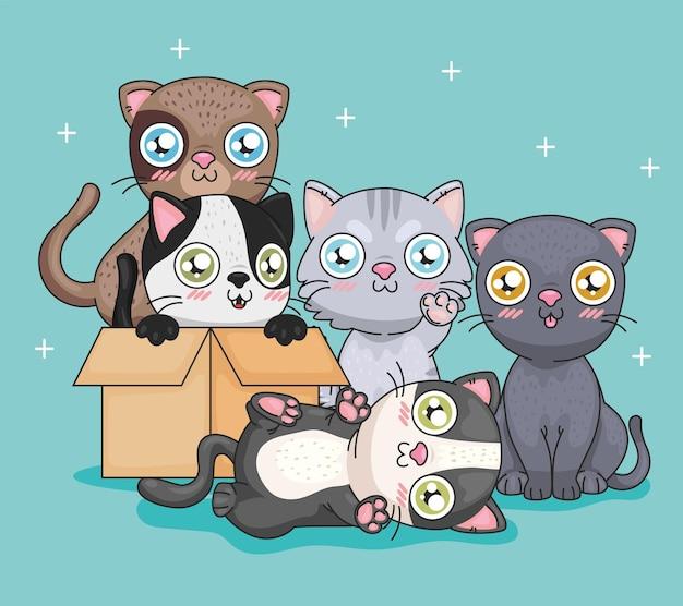 Cartoni animati di gatti con scatola
