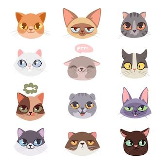Set di illustrazioni di teste di gatti