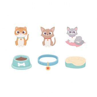 Gatti con cuscino collare ciotola per alimenti, animali domestici Vettore Premium