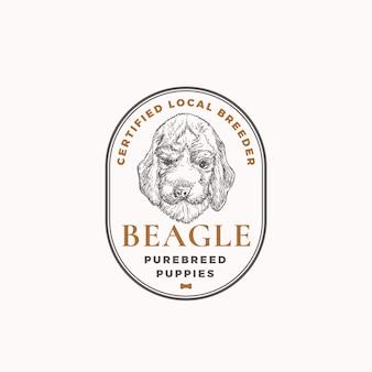 Distintivo del telaio dell'allevatore di cani certificato o modello di logo disegnato a mano schizzo del cucciolo di beagle con retro ty...