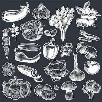 Disegno di verdure a gesso. varie verdure disegnate a mano vintage, carote organiche broccoli melanzane, cavoli e funghi, cibo agricolo. schizzo vettoriale impostato sulla lavagna