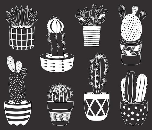 Set di piante in vaso di cactus di lavagna