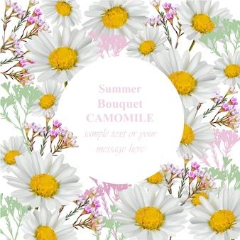 Scheda fiori di camomilla. illustrazione vettoriale rotondo di decorazione di stile dell'annata