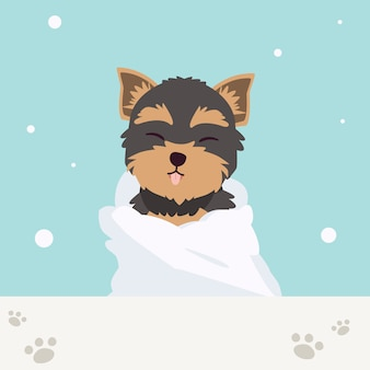 Il personaggio del simpatico yorkshire terrier indossa un asciugamano con molta bolla di sapone in stile piatto. illustation sulla cura degli animali domestici