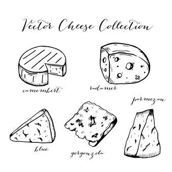 Collezione d'arte linea di formaggio
