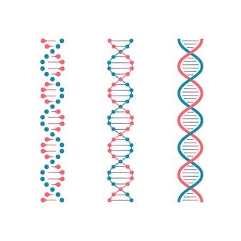Codice chimico dna. doppio codice genetico della molecola umana. il futuro della biotecnologia