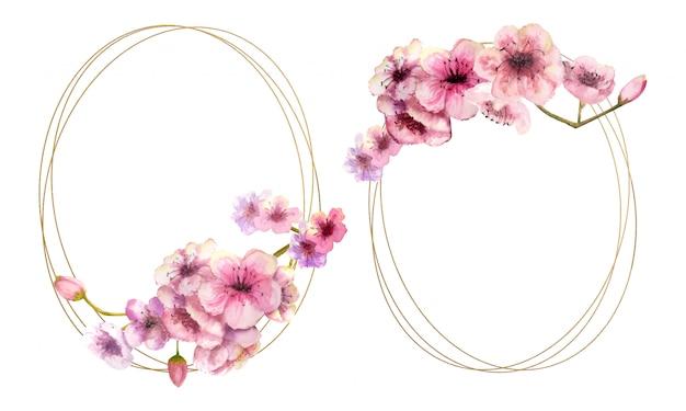 Fiore di ciliegio, ramo di sakura con fiori rosa su montatura in oro e isolato su bianco. immagine di primavera. 2 cornici con fiori ad acquerelli. illustrazione.