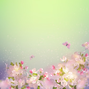 Fiore di ciliegio in primavera Vettore Premium