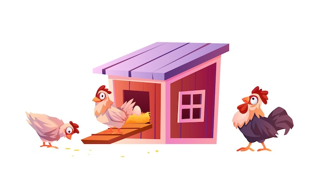Pollaio cartoon warnhouse per galline e galli isolati il pulcino di vettore porta le uova nel nido