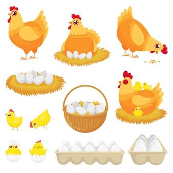Uova di gallina, gallina d'allevamento, nido e vassoio di uova di gallina cartoon set