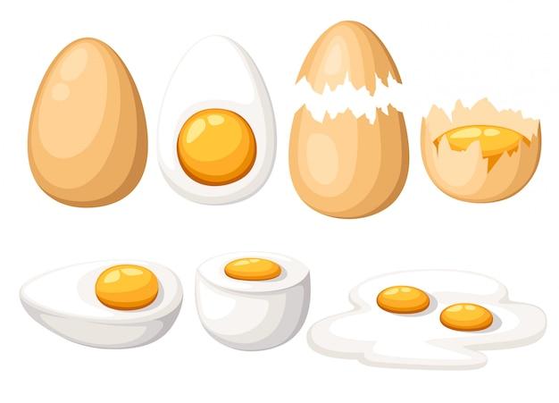 Uova di gallina. set di uova arrostite, bollite, crude, affettate e incrinate. su sfondo bianco.