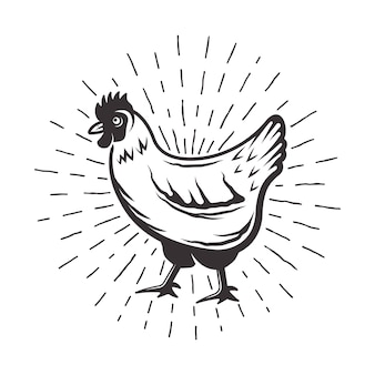 Pollo con illustrazione monocromatica di raggi di sole in stile retrò