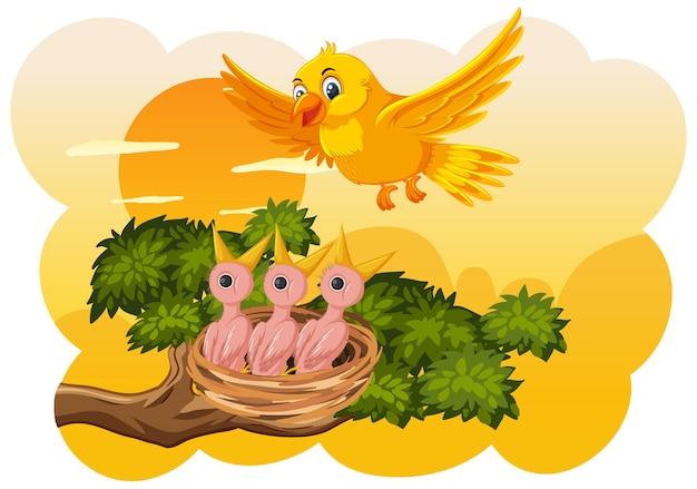 Pulcini e sua madre uccello in natura