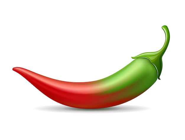 Peperoncino verde sfumato colore rosso design morbido su sfondo bianco eps 10 illustrazione vettoriale