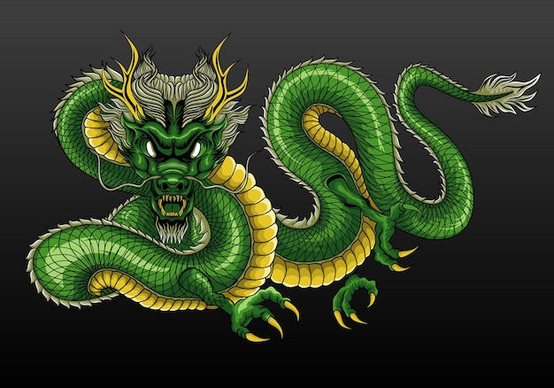 Illustrazione di drago cinese verde