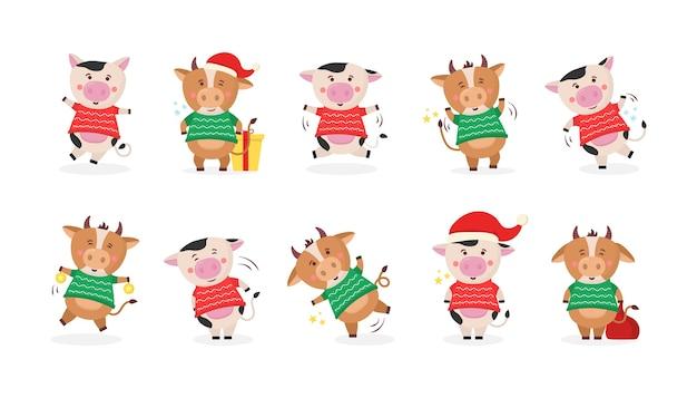 Nuovo anno cinese 2021 mucca che tiene un segno d'oro