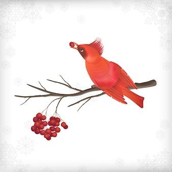 Cartolina di natale con uccello rosso sul ramo di un albero di rowan