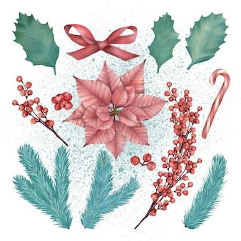 Set di decorazioni natalizie con stella di natale