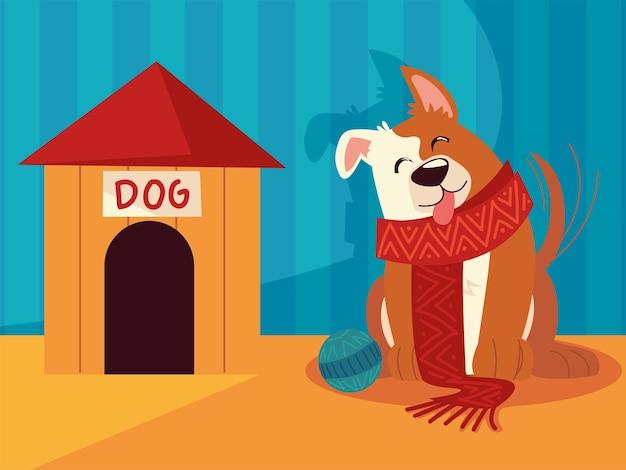 Cane di natale con casa sciarpa e celebrazione della palla