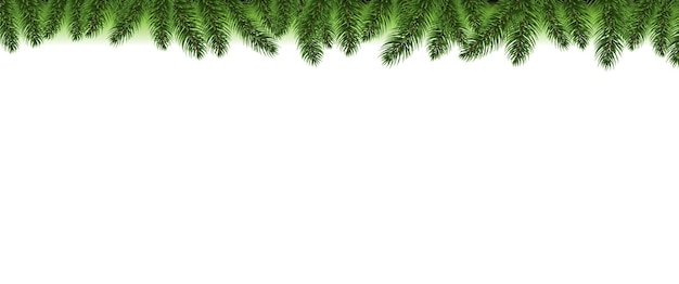 Priorità bassa di bianco del bordo dell'albero di abete di natale