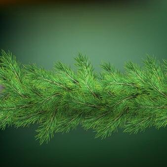 Bordo di festa di natale con le decorazioni realistiche dei rami di abete con ombra, su verde.