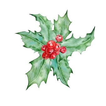 Composizione decorativa nella bacca dell'agrifoglio di natale e del nuovo anno. illustrazione disegnata a mano dell'acquerello, isolato su priorità bassa bianca