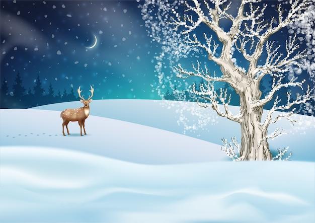 Paesaggio invernale di notte di natale