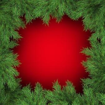 Rami di albero di natale su sfondo rosso.