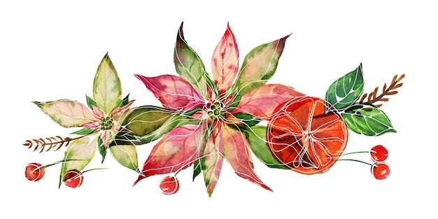 Composizione acquerello di natale con poinsettia e bacche rosse invernali su sfondo bianco