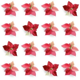 Fondo senza cuciture dei fiori della stella di natale di inverno di natale, stampa del modello floreale