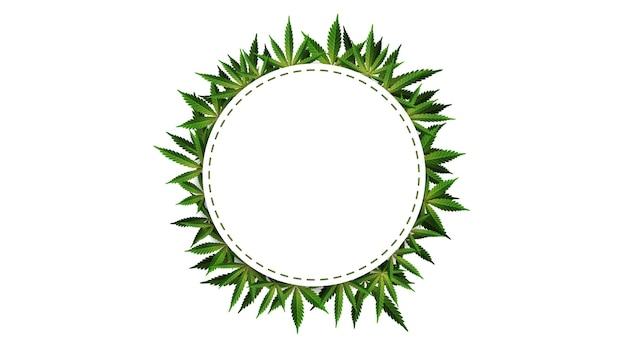 Cornice circolare di foglie di canapa intorno a uno spazio vuoto bianco.