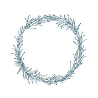 Decorazione circolare o ghirlanda di rosmarino disegnata a mano con linee di contorno su bianco