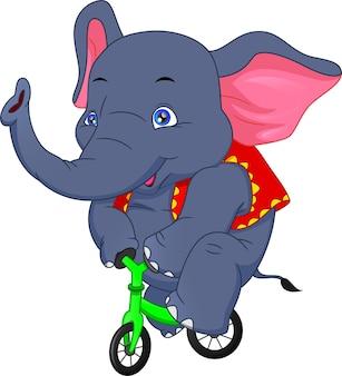 Elefante del circo in sella a una bicicletta