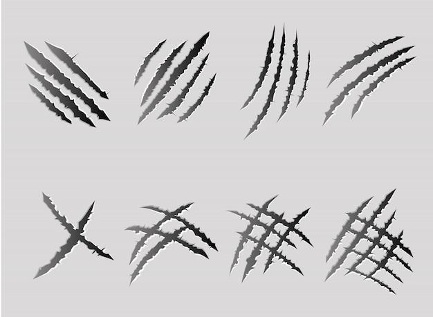 I graffi degli artigli hanno messo isolato su fondo bianco.