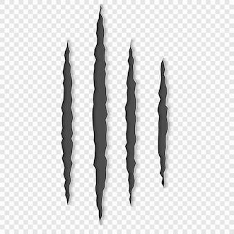 Graffi di artigli con le ombre