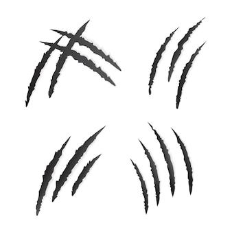Artigli graffiare animale selvatico impostato su sfondo bianco