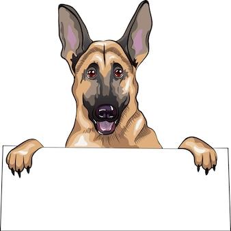 Close-up verticale di un cane di razza pastore tedesco sorride e tiene un cartello