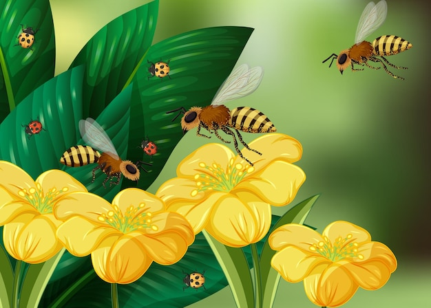 Primo piano scena con molte api e fiori gialli su sfocatura verde
