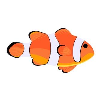 Pesce pagliaccio. icona di amphiprioninae isolata su sfondo bianco