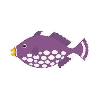 Pesce pagliaccio tigro, pesce esotico pesce marino tropicale