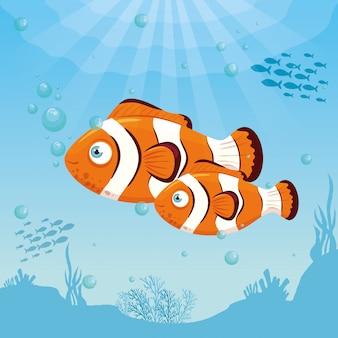 Animali del pesce pagliaccio marini nell'oceano, abitanti del mondo del mare, simpatiche creature sottomarine, habitat marino