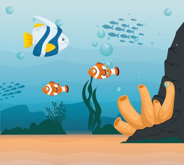 Animali del pesce pagliaccio marini nell'oceano, con pesci ornamentali, abitanti del mondo marino, simpatiche creature sottomarine, habitat marino