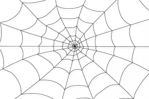 Ragnatela isolata su sfondo bianco e trasparente. elementi di ragnatela, decorazioni di halloween raccapriccianti, spaventose, horror. illustrazione eps spider felice festa di halloween divertente divertente logo spettrale