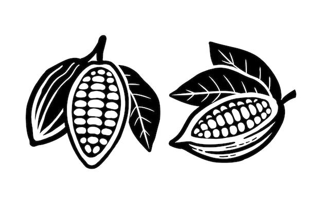 Icona di fave di cacao. isolato su uno sfondo bianco.