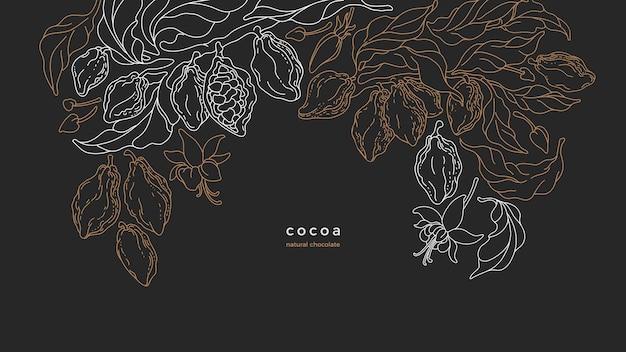 Baccelli crudi dell'albero di cacao e fava aromatica sulla piantagione di cioccolato ecuador naturale