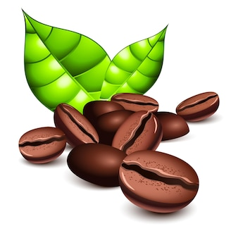 Chicchi di caffè e foglie