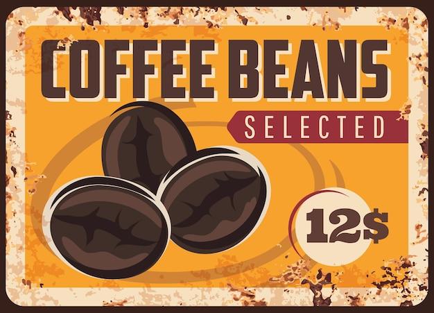 Piatto di chicchi di caffè. grani arrostiti selezionati sulla vecchia piastra di metallo arrugginito. Vettore Premium