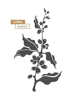 Ramo di caffè con foglie e fagioli forma botanica pianta realistica